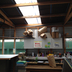 before-and-after-garage-skylights-6.